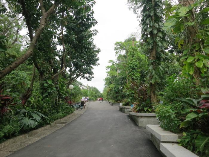 広い台北動物園