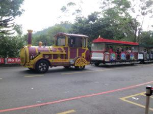 台北動物園を走る車