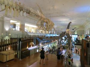 台北の土銀展示館