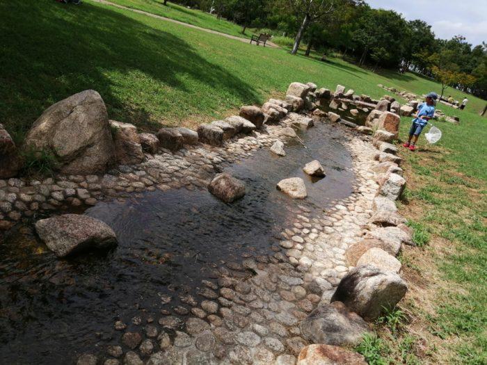 芦屋市総合公園の小川