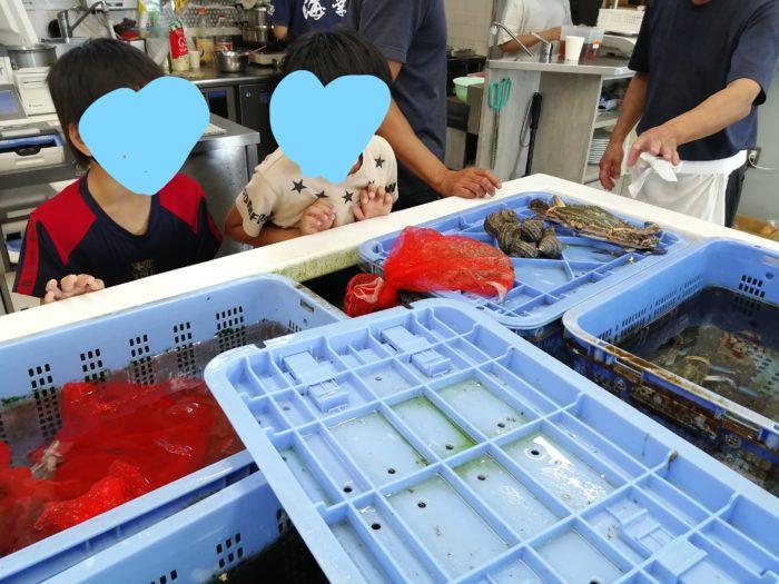 海幸で海鮮を購入