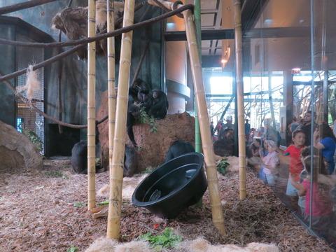 20160827LP動物園2_032